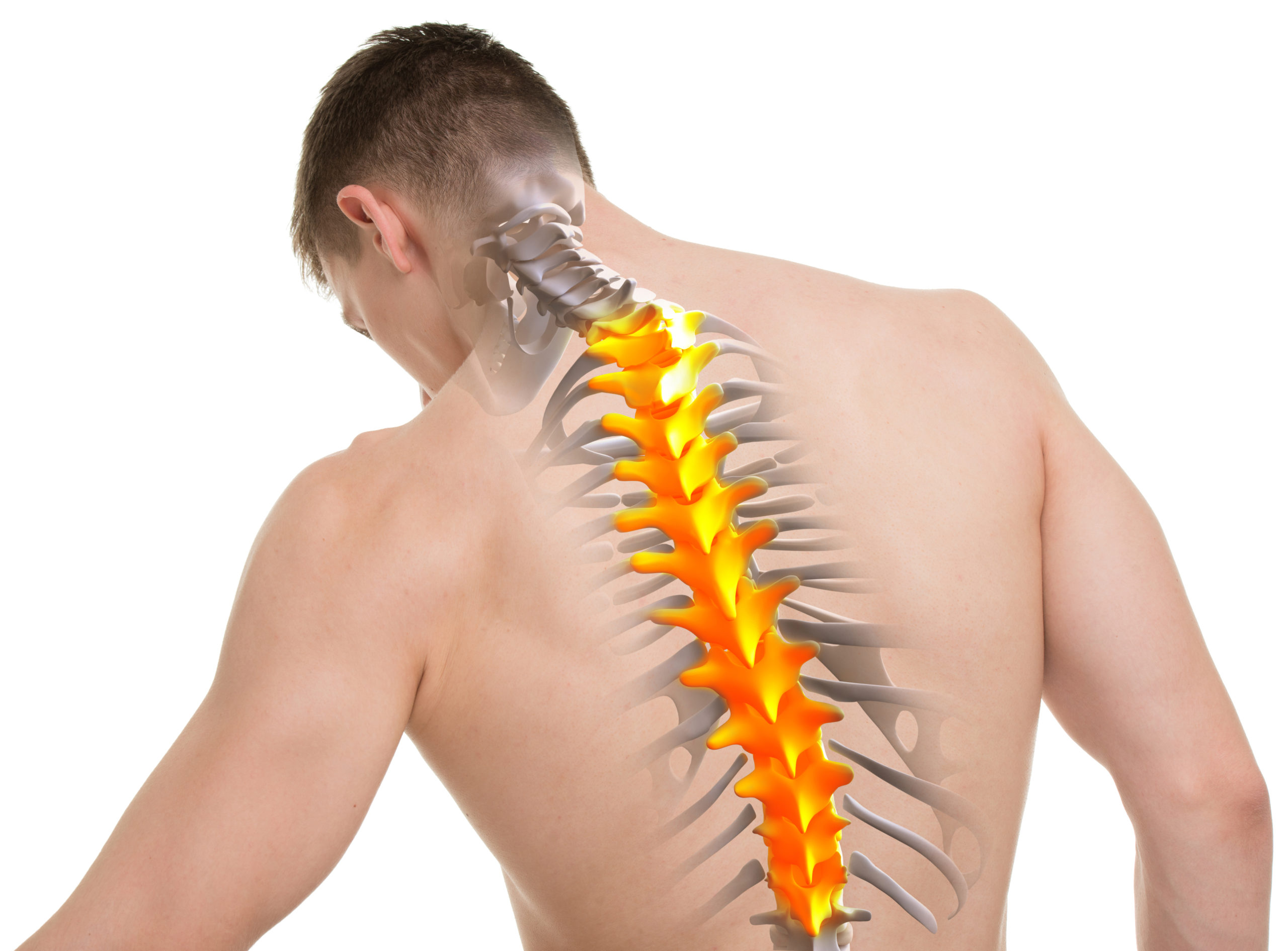 How Does the T-Spine Affect Shoulder Muscle Pain?